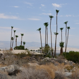 Desert Home 5