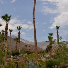 Desert Home 4