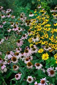 Soho Garden